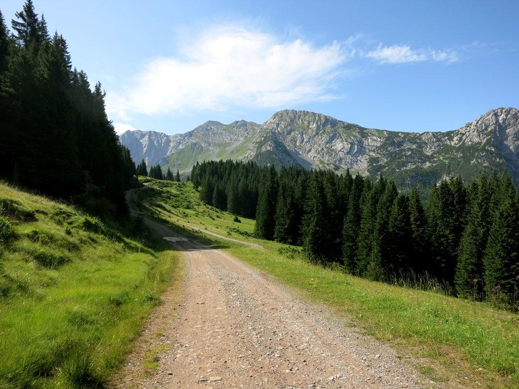 Passo Polentin, Passo di Meledis